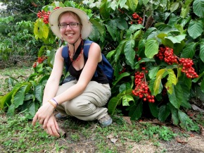 Mélanie Congretel - Finding shade under a beautiful fruiting guarana tree in central Brazilian Amazon - February 2014