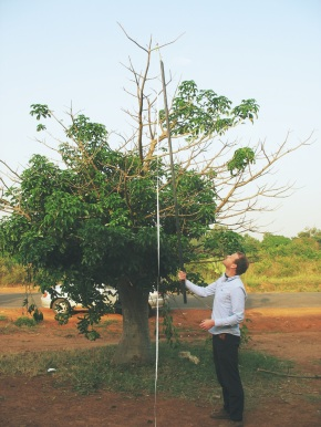 Cory Whitney using the 'really long stick with a tape-measure hanging from it' method, one of many height measurement tools, for Adansonia digitata in Soroti, Uganda. Photo by Jens Gebauer