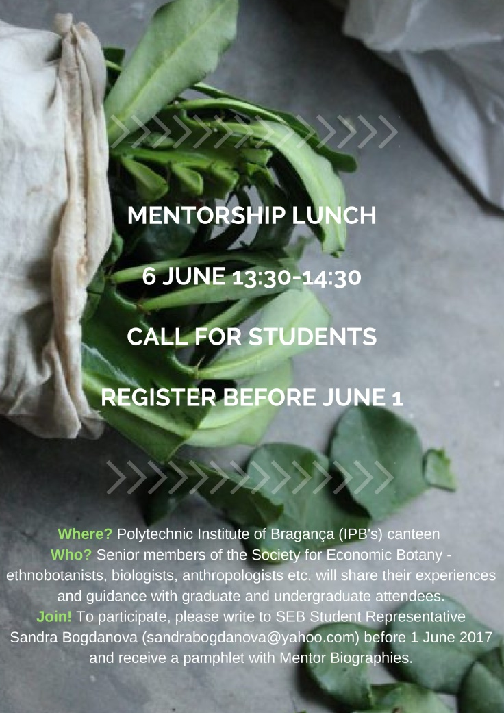 Mentorship_Lunch_06_06_2017_Call_for_students-001