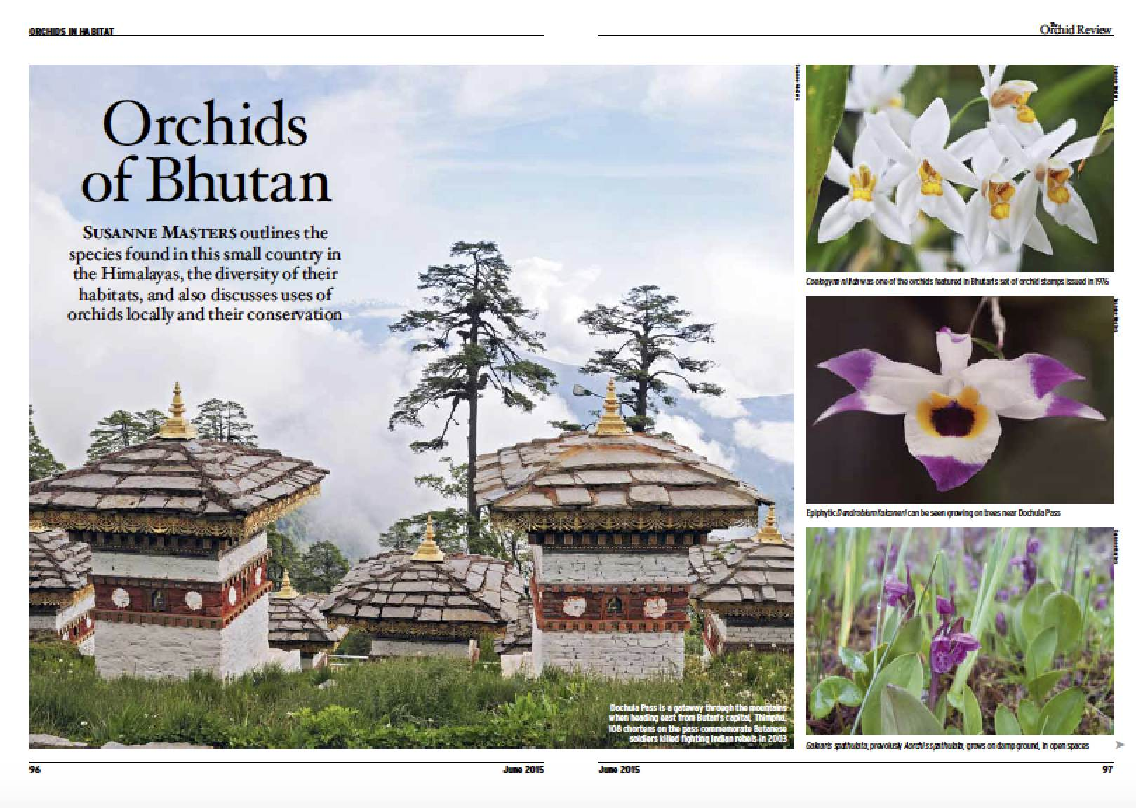 Orchid Review Orchids of Bhutan