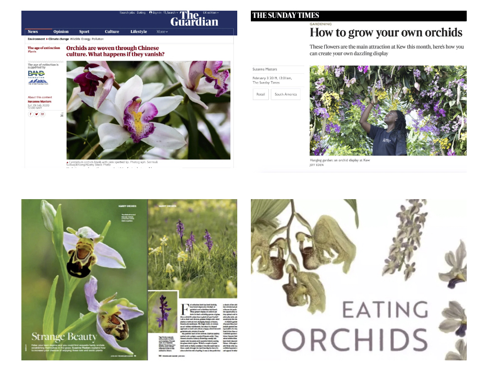 Orchids articles examples